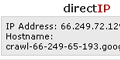 directIP Address